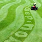 you da dad grass